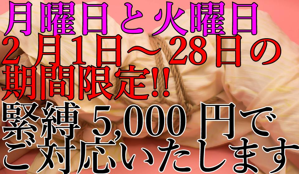 緊縛キャンペーン-01