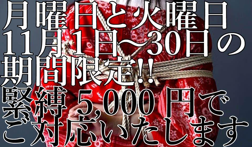 2017年11月1日と11月30日の月曜日と火曜日間限定!緊縛料金5,000円!!