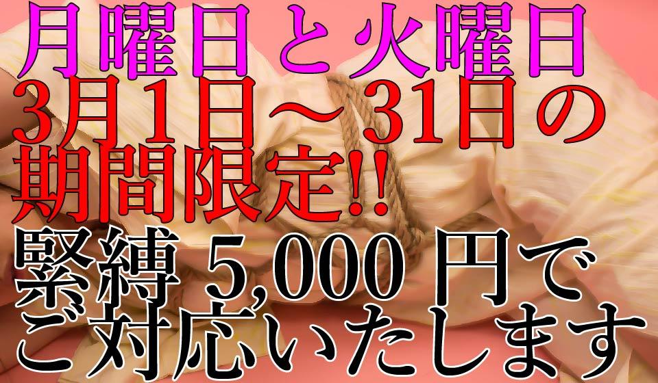 2018年3月1日〜31日の月曜日と火曜日間限定!緊縛料金5,000円!!