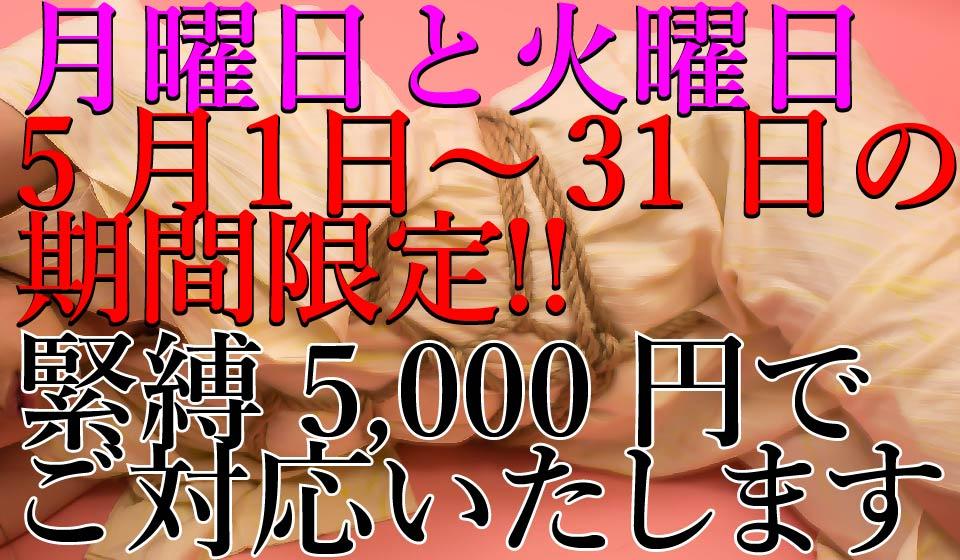 2018年5月1日〜30日の月曜日と火曜日間限定!緊縛料金5,000円!!